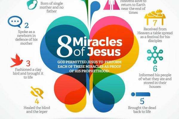 8 miracles